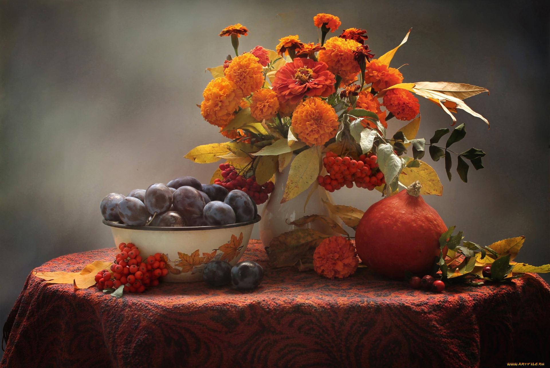 еда, натюрморт, сливы, рябина, осень, тыква, фрукты, бархатцы, цинния